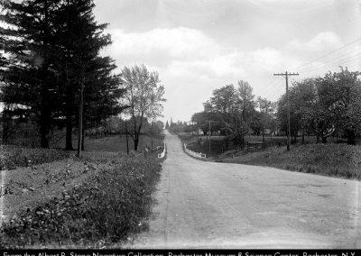 Mount Read Boulevard